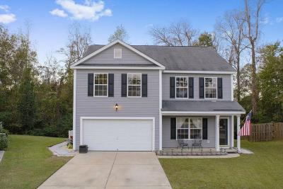Summerville Single Family Home For Sale: 108 Sun Valley Court