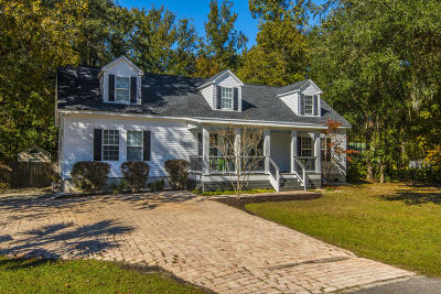 Mount Pleasant Single Family Home For Sale: 2948 Bobo Road