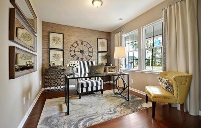 Moncks Corner Single Family Home For Sale: 305 Sunny Springs Trail