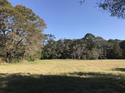 Johns Island Residential Lots & Land For Sale: 3599 Dry Street