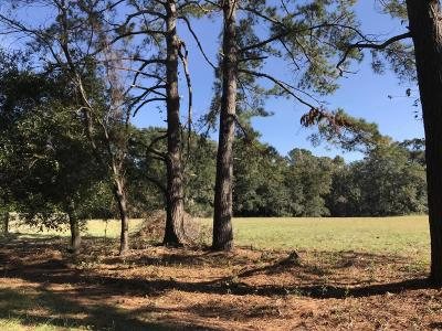 Johns Island Residential Lots & Land For Sale: Wild Plum Road