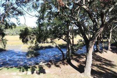 Charleston Attached For Sale: 1402 Camp Road #13h