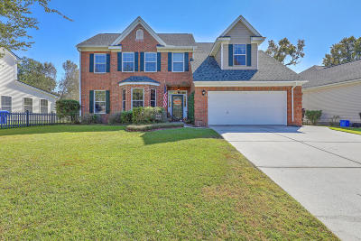 Mount Pleasant SC Single Family Home For Sale: $459,210