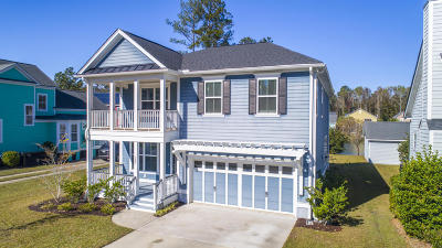 Summerville Single Family Home For Sale: 303 Branch Creek Trail