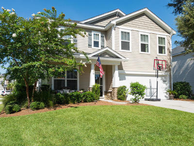 Mount Pleasant SC Single Family Home For Sale: $374,900