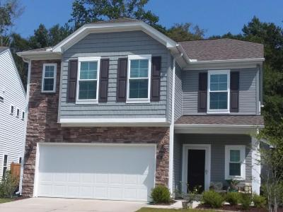 Mount Pleasant SC Single Family Home For Sale: $384,000