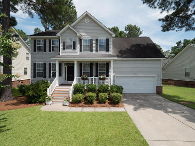 Mount Pleasant Single Family Home For Sale: 2388 Bergeron Way