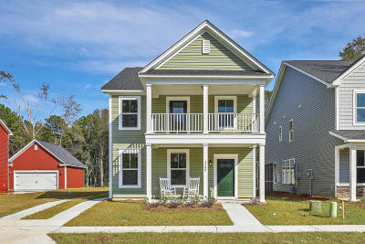 Charleston Single Family Home For Sale: 1532 Roustabout Way