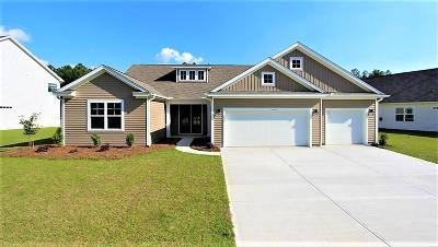 Moncks Corner Single Family Home For Sale: 621 Woolum Drive