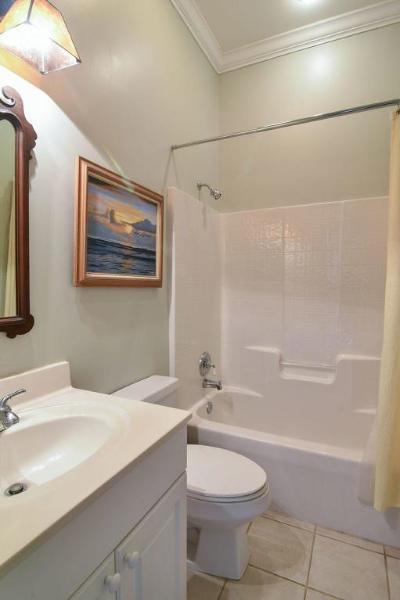 Mount Pleasant Single Family Home For Sale: 13 Leeann Lane