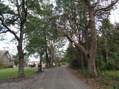 Charleston Residential Lots & Land For Sale: Delaney Drive