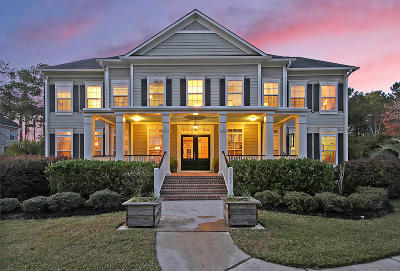 Single Family Home For Sale: 2449 Darts Cove Way