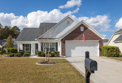 Dorchester County Single Family Home Contingent: 101 Elena Court