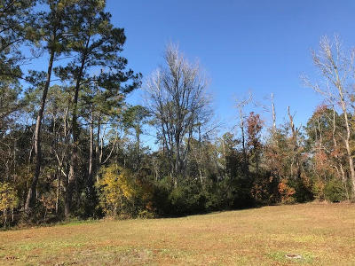 Johns Island Residential Lots & Land For Sale: 2922 Zachary George Lane