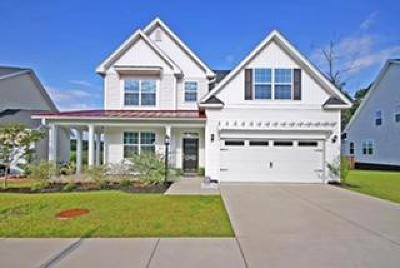 Moncks Corner Single Family Home For Sale: 105 Waccamaw Circle