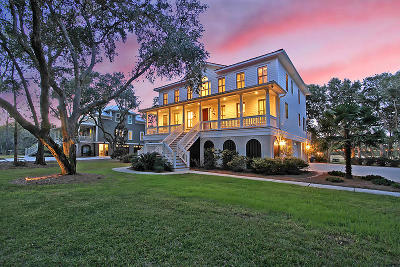 Charleston Single Family Home For Sale: 554 Parrot Point Drive