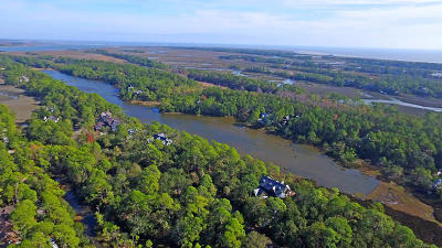Charleston County Residential Lots & Land For Sale: 136 Blue Heron Pond Road