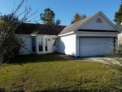 Goose Creek Single Family Home For Sale: 245 Hastings Drive