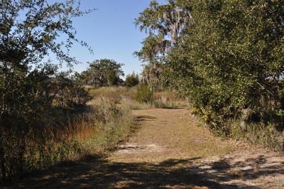 Charleston Residential Lots & Land For Sale: 362 Mutual Drive