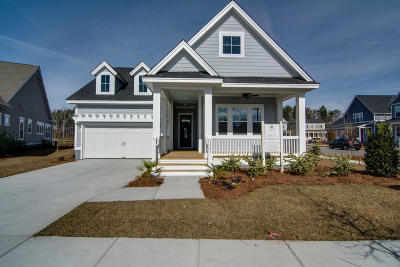 Mount Pleasant SC Single Family Home For Sale: $580,524