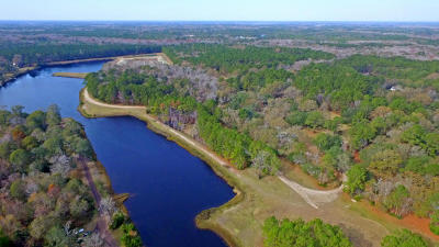 Johns Island Residential Lots & Land For Sale: 1210 Michelle Lane