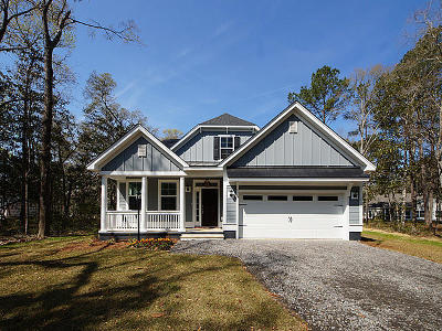 Johns Island Single Family Home For Sale: 3279 Olivia Marie Lane