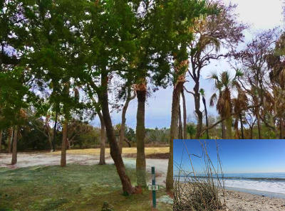 Edisto Island SC Residential Lots & Land For Sale: $479,000
