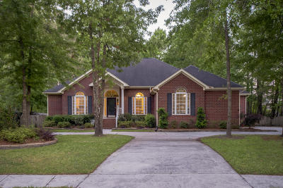 North Charleston Single Family Home For Sale: 4431 Wild Thicket Lane