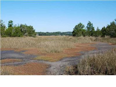 Edisto Island SC Residential Lots & Land For Sale: $69,900