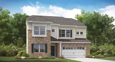 Ladson Single Family Home For Sale: 9807 Boxelder Court