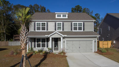 Johns Island Single Family Home For Sale: 1279 Hammrick Lane