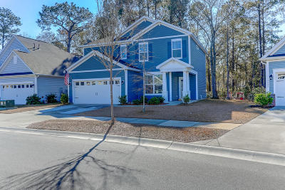 Johns Island Single Family Home For Sale: 3249 Hartwell Street
