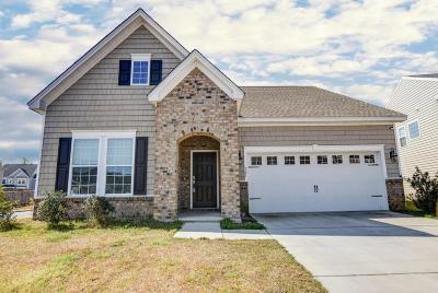Moncks Corner Single Family Home For Sale: 201 Lab Court