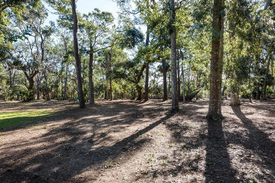 Edisto Island SC Residential Lots & Land For Sale: $169,000