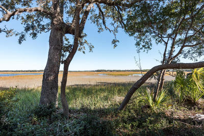 Edisto Island SC Residential Lots & Land For Sale: $495,000