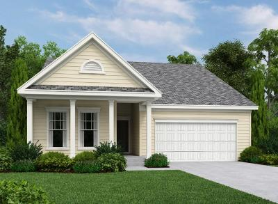 Johns Island Single Family Home For Sale: 1158 Turkey Trot Drive
