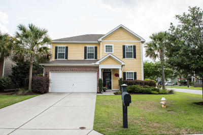 Single Family Home For Sale: 215 Nelliefield Creek Drive