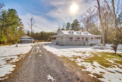 Summerville Single Family Home For Sale: 129 Storey Road
