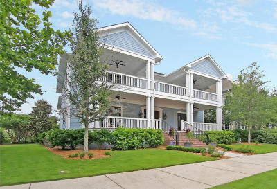 Daniel Island Single Family Home For Sale: 131 Island Park Drive