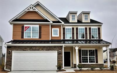 Single Family Home For Sale: 3396 Kirkwall Drive