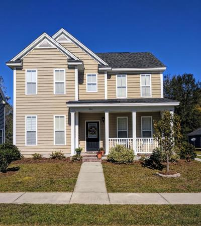 Goose Creek Single Family Home Contingent: 204 Old Savannah Drive