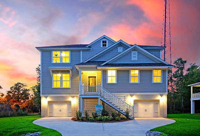 Charleston County Single Family Home Contingent: 3900 James Bay Road
