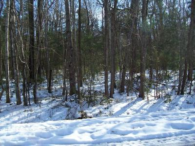 Residential Lots & Land For Sale: 1312 Ot Wallace Boulevard