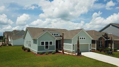 Summerville Single Family Home For Sale: 121 Whaler Avenue