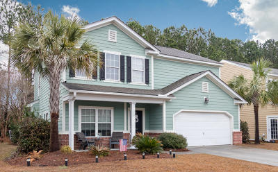Single Family Home Contingent: 206 Nelliefield Creek Drive