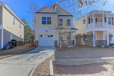 Charleston Single Family Home For Sale: 133 Larissa Drive