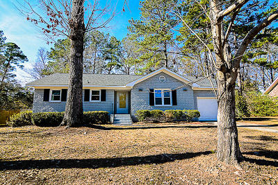 Summerville Single Family Home For Sale: 115 Anstead Drive