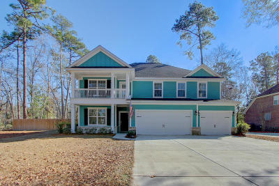 Summerville Single Family Home For Sale: 300 Ayers Circle