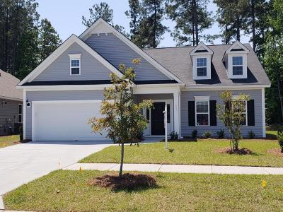 Summerville Single Family Home For Sale: 227 Saxony Loop