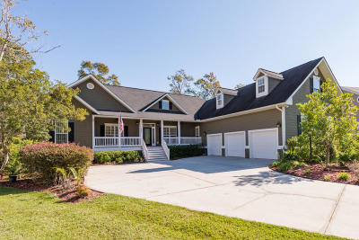 Charleston Single Family Home For Sale: 127 Brogun Lane